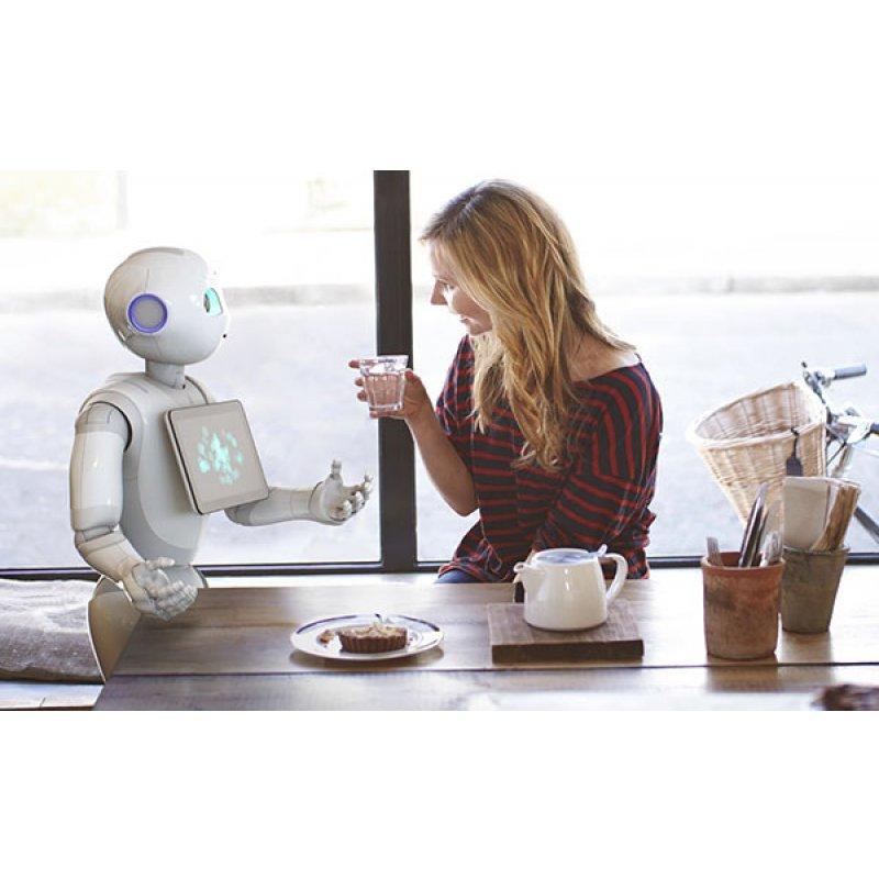 Нужно ли обращаться с роботом по-человечески?