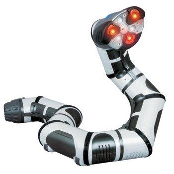 Roboboa-2