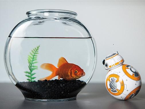 Робот-дройд BB-8-1