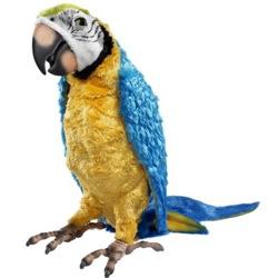 Интерактивный попугай-1