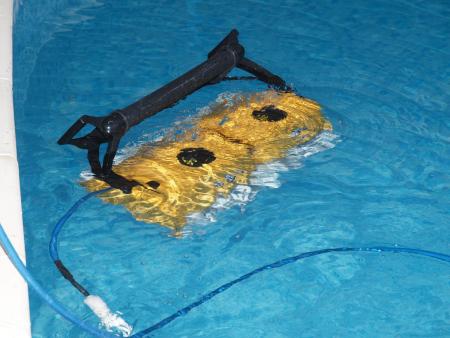 Робот для бассейна Dolphin 2×2 Pro Gyro-1