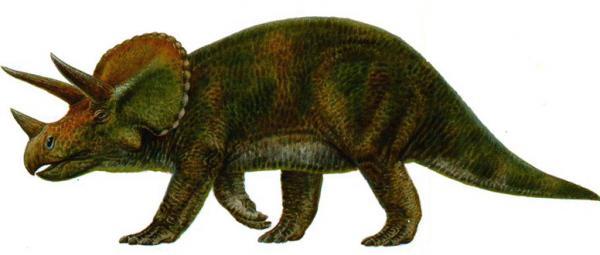Динозавры-1