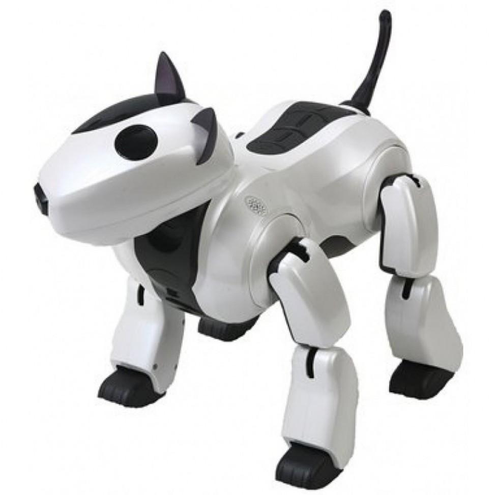 Робот-собака Genibo New-4