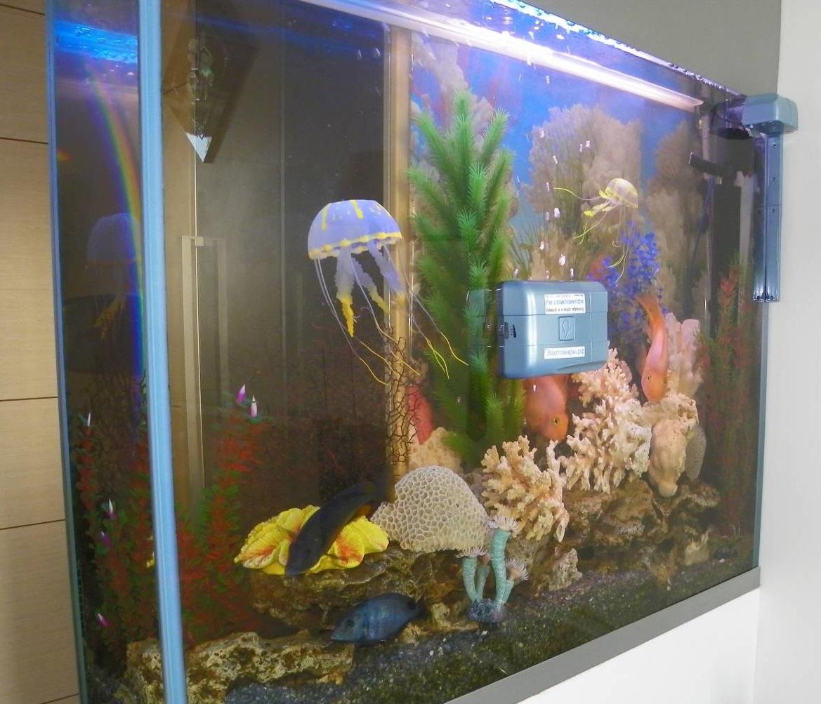 Робот для аквариумов RoboSnail-3