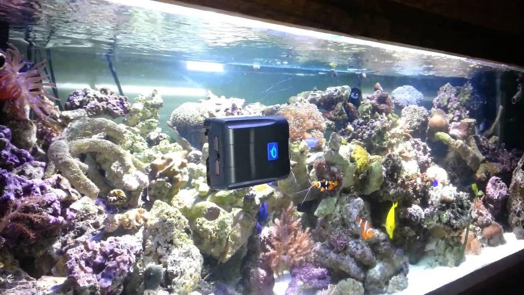 Робот для аквариумов RoboSnail-7