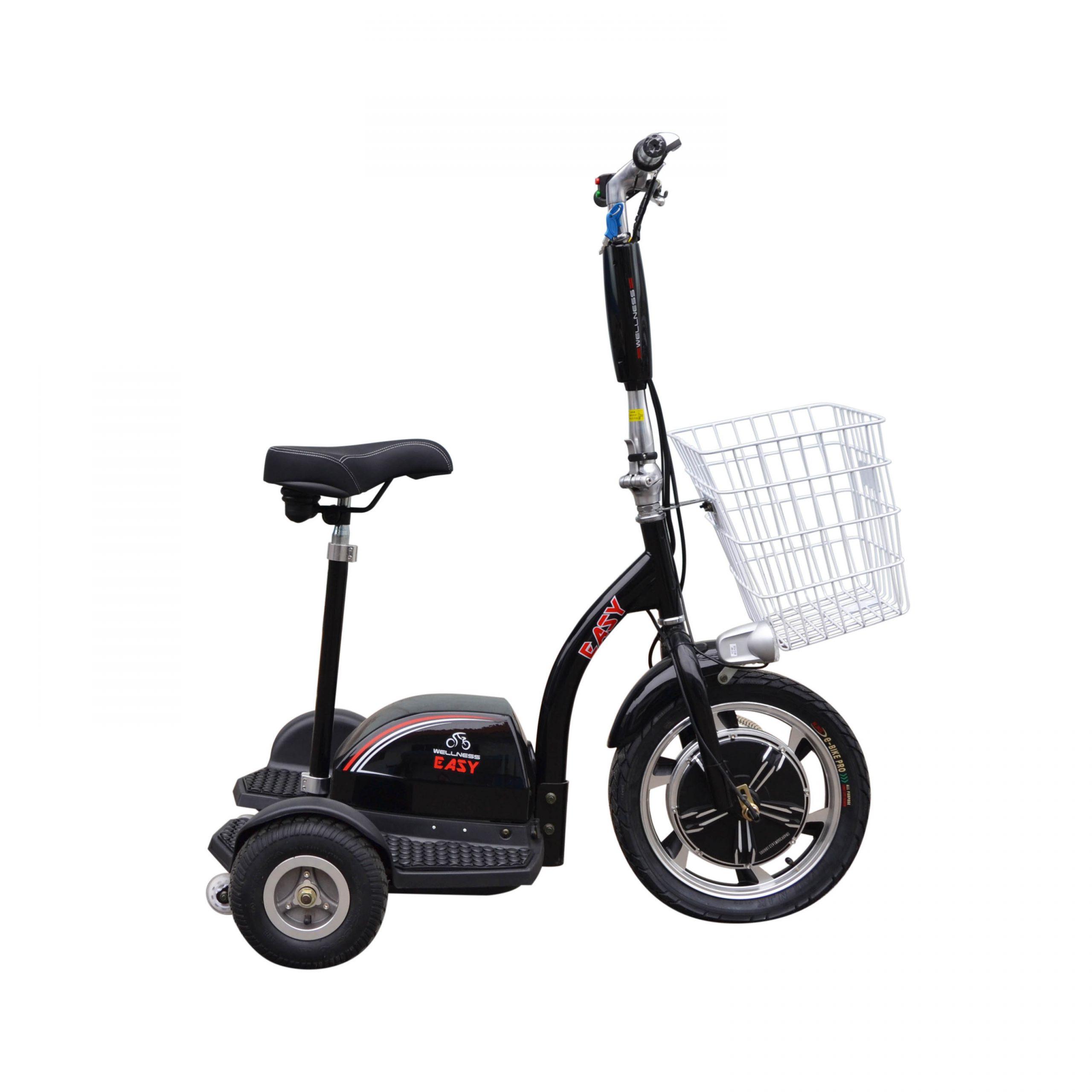 Трицикл WELLNESS EASY-6