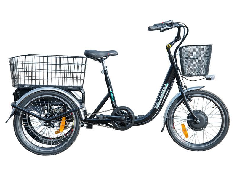 Электроцикл Wellness FAZENDA 500-1