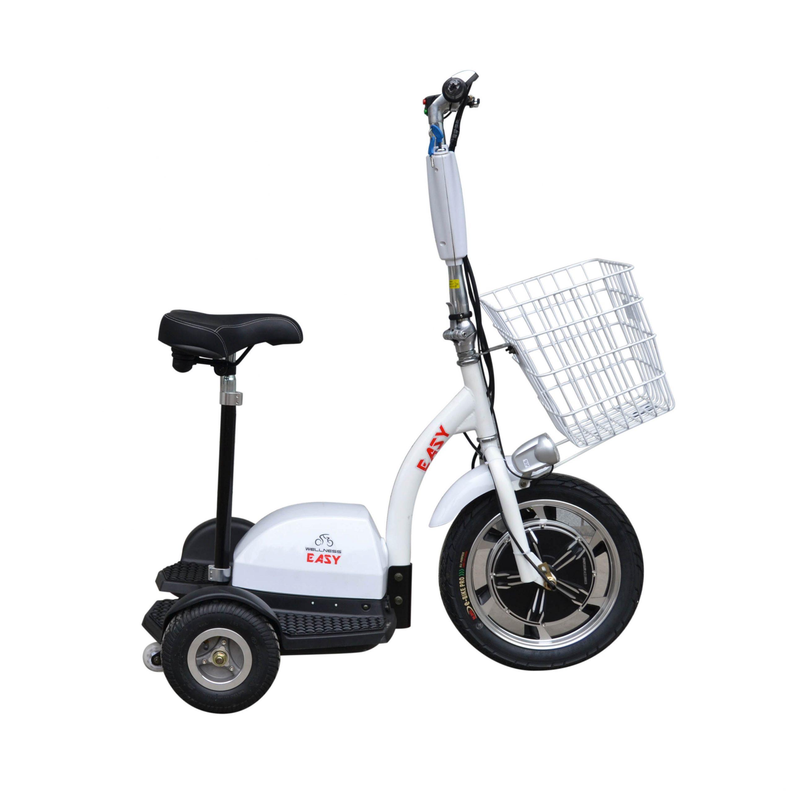 Трицикл WELLNESS EASY-4