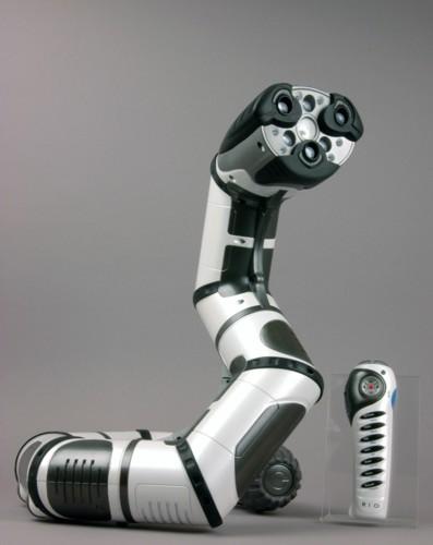 Roboboa-1