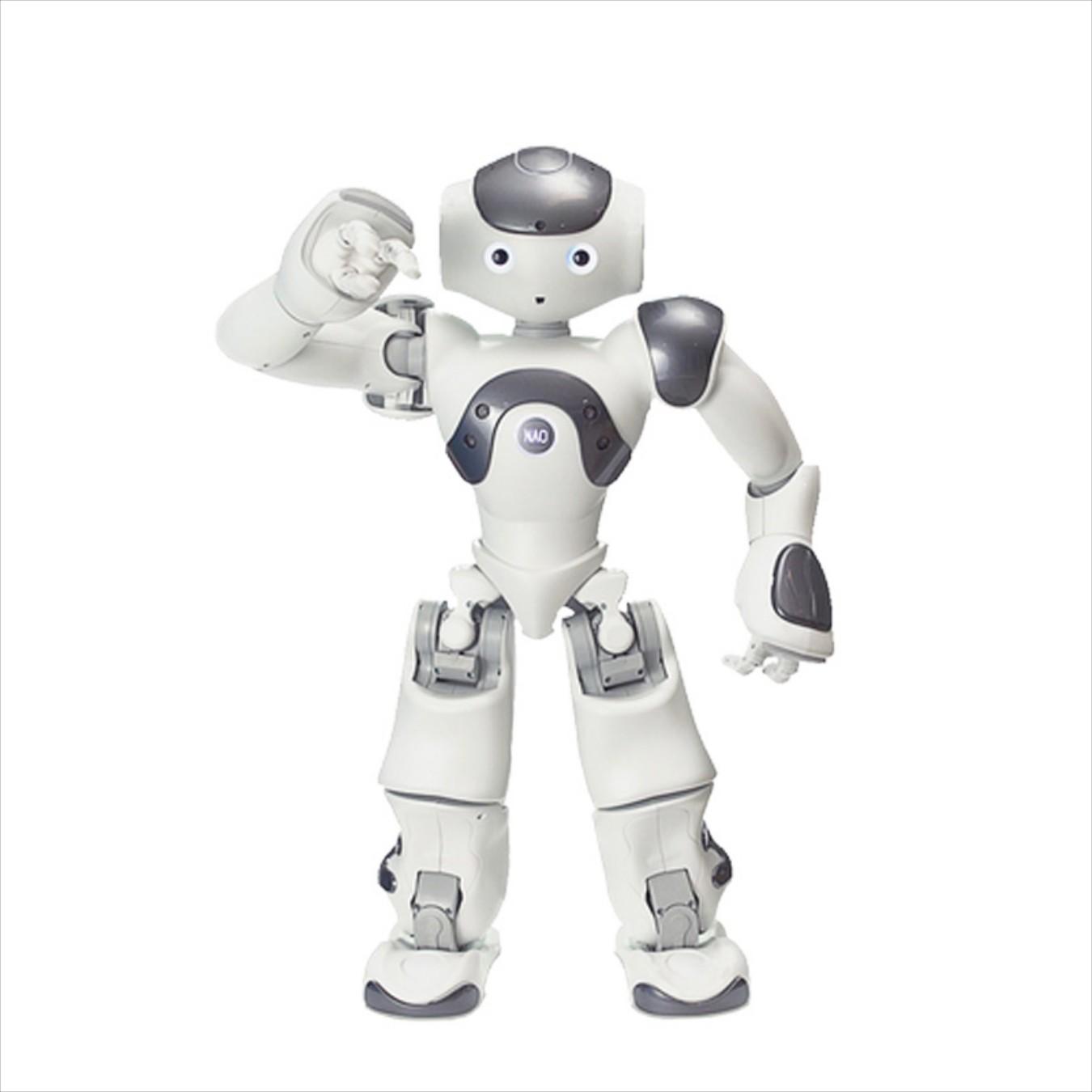 Андроидный робот ZoraBots NaoV6 w/Zora Solution