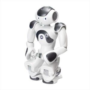 NAO Андроидный робот ZoraBots NaoV6