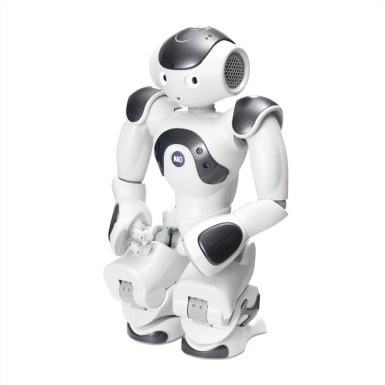 Андроидный робот ZoraBots NaoV6 w/Zora Solution-2